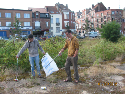 vistors help to clean the site